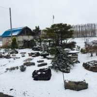晴耕「雪」読!