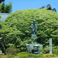 新緑の将軍塚から水天宮、荒幡富士などを巡る(埼玉・所沢)