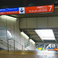JR上野東京ラインに乗って横浜へ