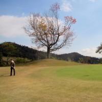 ゴルフ(Y田C.C16番アプローチショット)