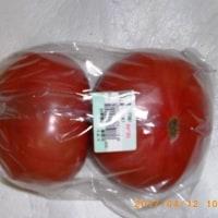 今一番うまい!稲葉 宣代さん生産のトマト