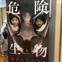 第50回特別展「危険生物~悪者たちの真実~」好評開催中です!