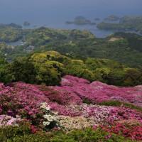 長崎県、名串山のつつじp5(D810,24-85mm)