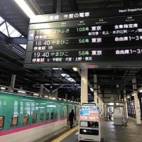 2541)南部伊達駆け巡り 7景目(盛岡→一関)