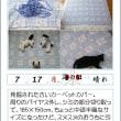 170717 185☓150サイズで第2の人生(^^;)