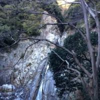 北野谷から再度山~高雄山~世継山~布引の滝 藪こぎ登山