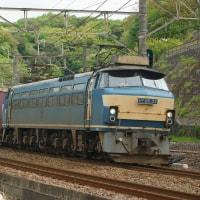 2017年4月24日  東海道貨物線  東戸塚  EF66-33 5097レ