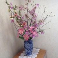 桜,チューリップ,カーネーション,ぼけ,ツツジ