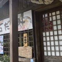 これが最後です。沖縄・11月のヌチカジリ(命の限り)シリーズ 写真たくさん〜