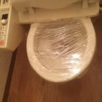 トイレの尿石おとし