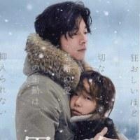 映画「男と女」―孤独を抱えた男と女が出逢うとき―
