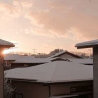 今朝の秋田は冬らしい。