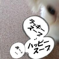 2017 鏡開き