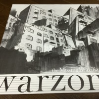 MISSING BRAZILIANS/WARZONE