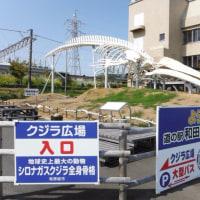 道の駅 和田浦「WAO!」