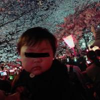 ピンポンパン♪4月8日夜目黒区の目黒川で花見をされた首から上がない男性の方・お伝えしたいことがございますので日本霊能者連盟までご連絡ください。♪ピンポンパン