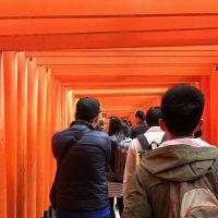 京都に行ってきました。その3。