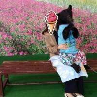 夫の両親と熊本旅行