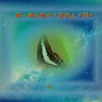 フォト575『 蝶一頭吾載せて雲超えて翔べ 』qx1404