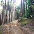 優柔不断ジジイ渋滞に泣く。比良、霊仙山〜蓬莱山。  2017-7-15