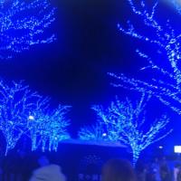 【青の洞窟】&【バカラのシャンデリア】