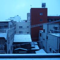 岐阜市も雪、新潟市も雪!