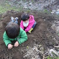 pochiko農園で暴れるちびっ子!!