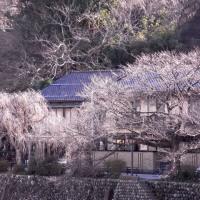 金沢diary,180日 ( 098 )