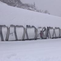 奥伊吹スキー場へ スキー デビューから 4回目