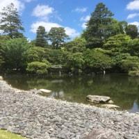 京都一日観光っ