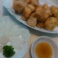 【食】アカメフグの刺身・唐揚げ