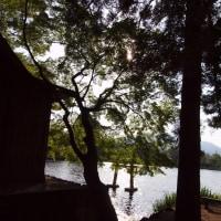 金鱗湖にて