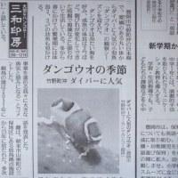 本日付読売新聞に掲載されました!!