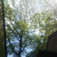 15日~17日の🍴食堂風景📷