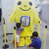 10月16日は新潟県知事選挙の日
