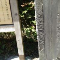 鎌倉しらす丼食べラン