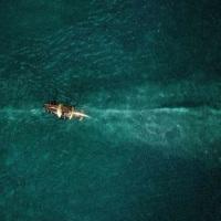 『白鯨との闘い』