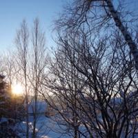朝陽を浴びて