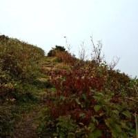 広島県 道後山ハイキング
