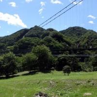 8月17日 栃木観光1日目・・・逆杉、木の葉石