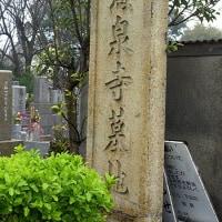 舞子墓苑に眠るM君を訪ねて