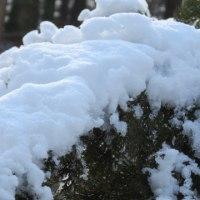 冬からのギフト 春の雪*