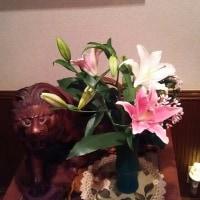 10/28パワーリハ:小池都知事のがんばりVIII(⌒‐⌒)
