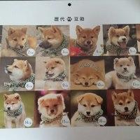 18代目豆助のカレンダーでしゅ。