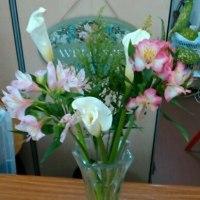 4月2回目の花