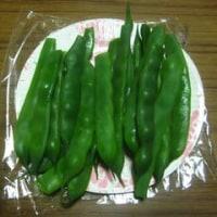 「インゲン豆」試食