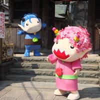 大岡川 弘明寺(ぐみょうじ)から桜木町、旧東海道、反町へ