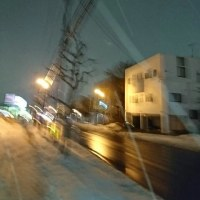 ほら、また雪だ⛄、、街路樹も寒そ!