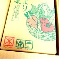カゴメの「つぶより野菜」お試し15本セット送料無料!