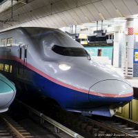 東京駅で並ぶ新幹線がまぶしく見えた夜